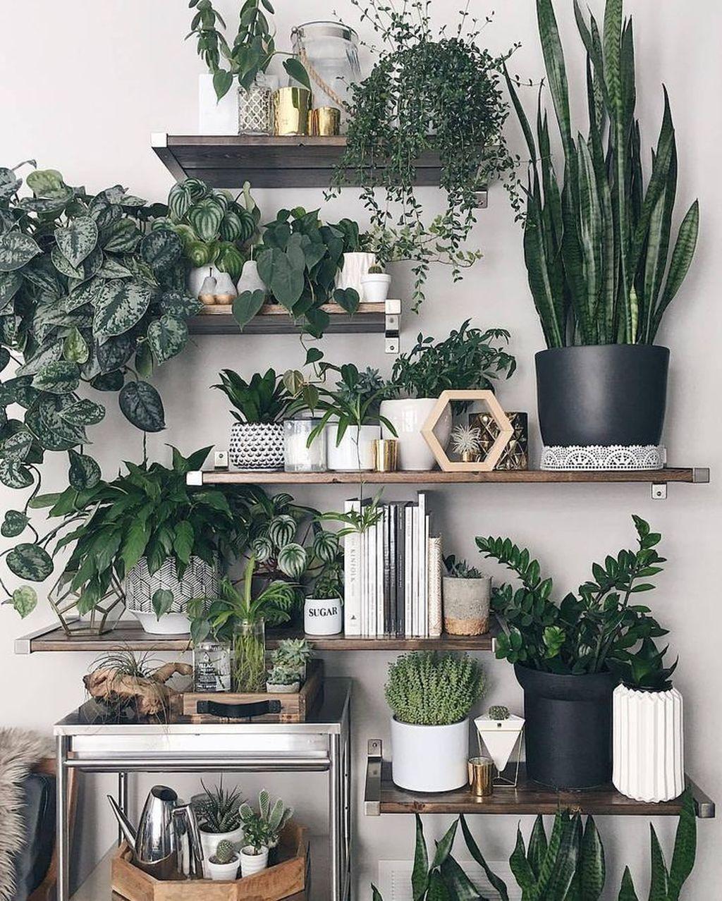 37 Diy Indoor Plant Display Ideas - BESTHOMISH
